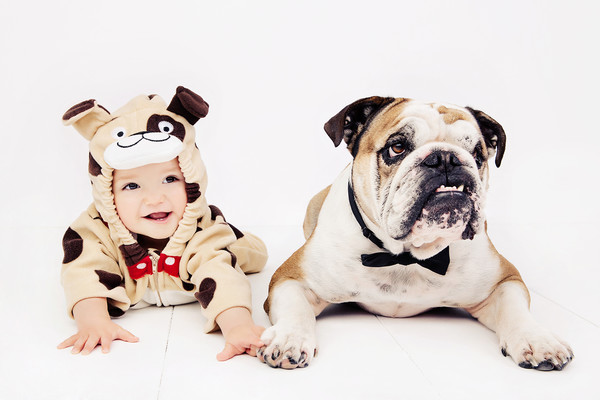 Baby Cody and Pet Soba Photo taken by our Auckland baby photographer