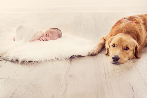 Salma and Bryan's Newborn and Pet Photo taken by our Auckland newborn photographer